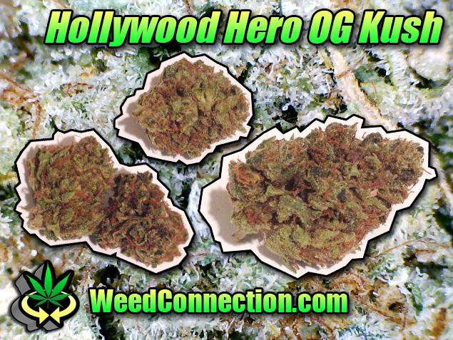 #Hero #OG #Kush #TBT